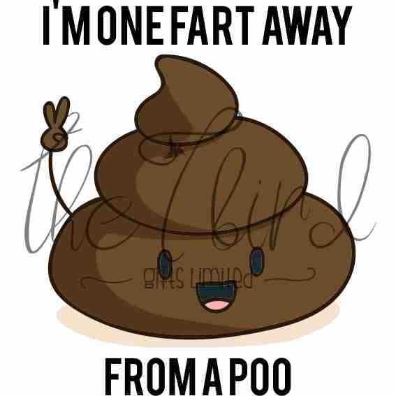 One fart away from a poo ~ toilet humour ~ Poo gift ~ Funny Present ~ Trump Gift